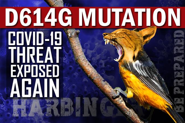 D614G Mutation | Covid-19 Threat Highlighted Again