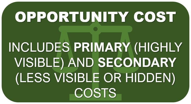 Opportunity Cost | Primary & Secondary Consequences