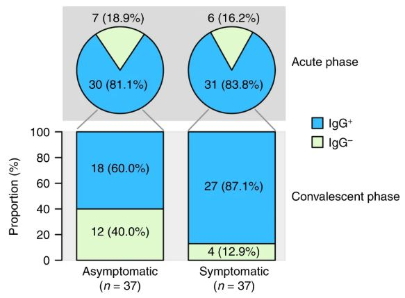 Percentage of Covid-19 Patients with Detectable Neutralizing Antibodies (IgG) during the Acute and Convalescent Pases.