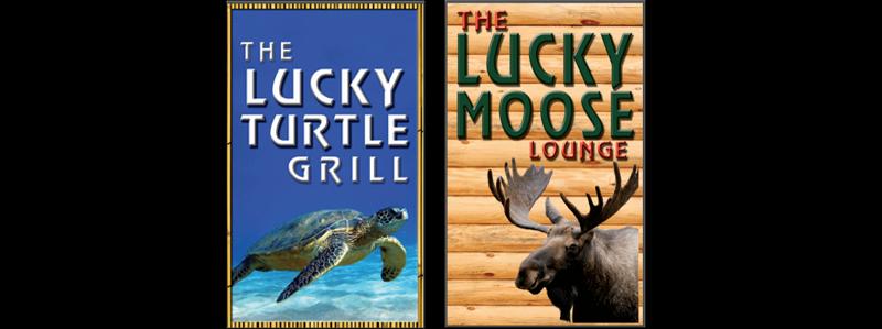 lucky turtle lucky moose
