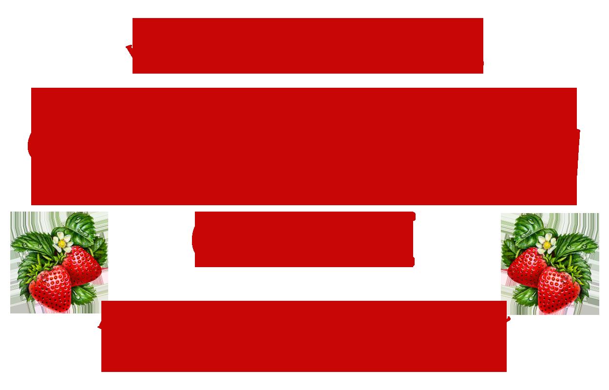 Passionberry Logo