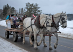 Christmas Begins in Kearney Horse Rides