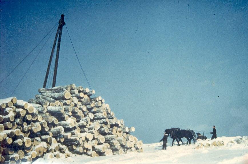 Kearney Logging Old Image