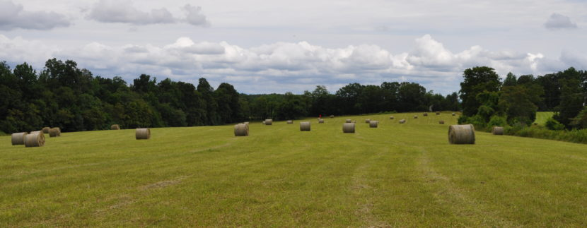 Land for sale in franklin County