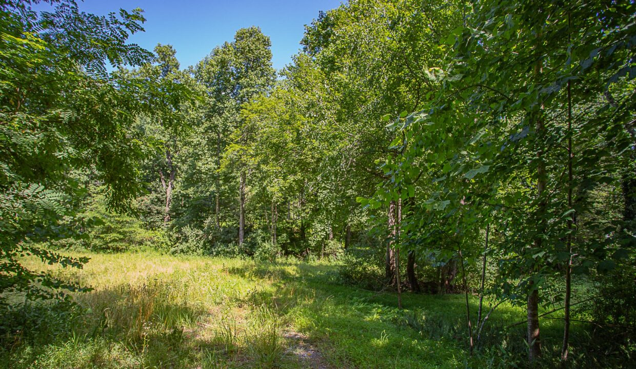 Land for Sale in Madison_02