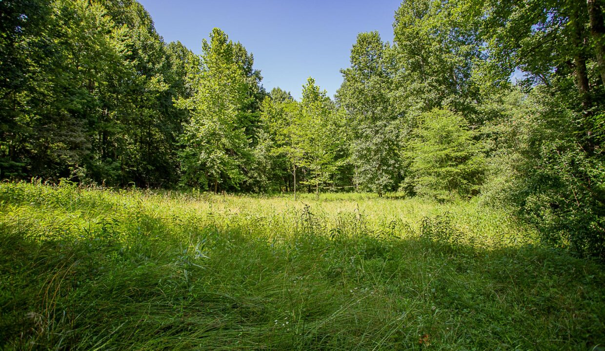Land for Sale in Madison_07