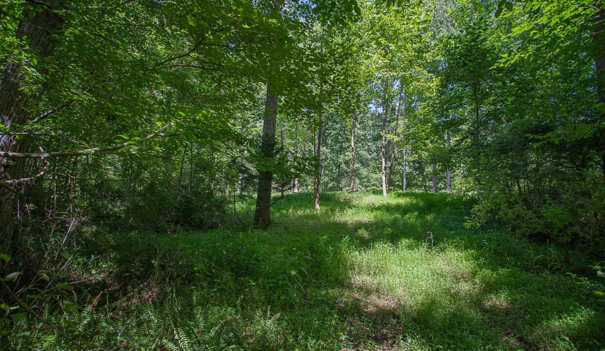 Land for Sale in Madison_08