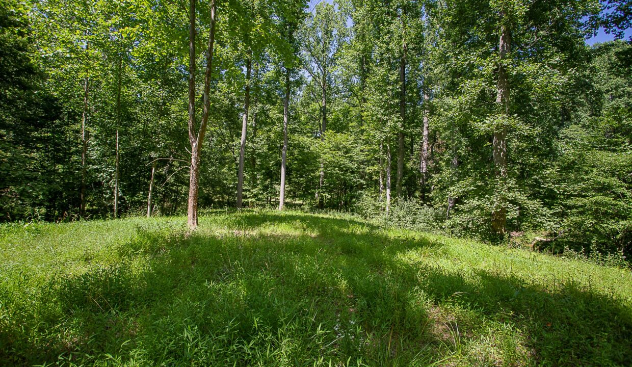 Land for Sale in Madison_14