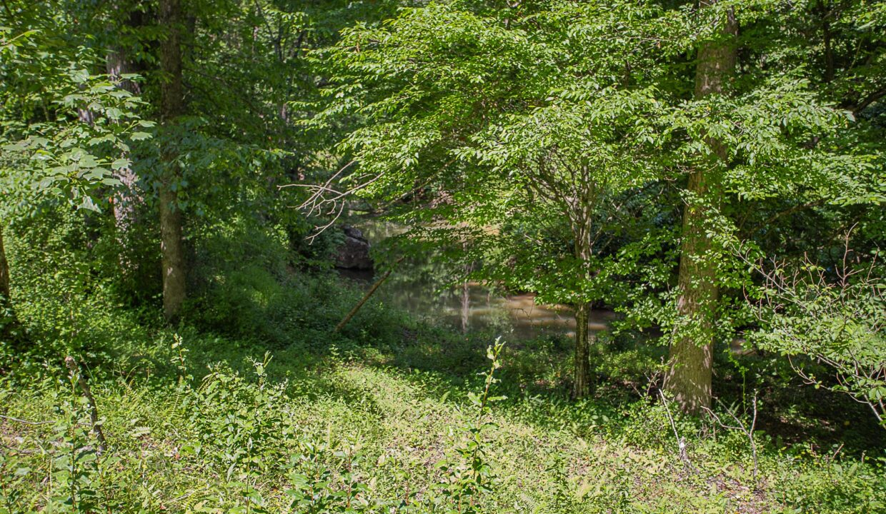 Land for Sale in Madison_17