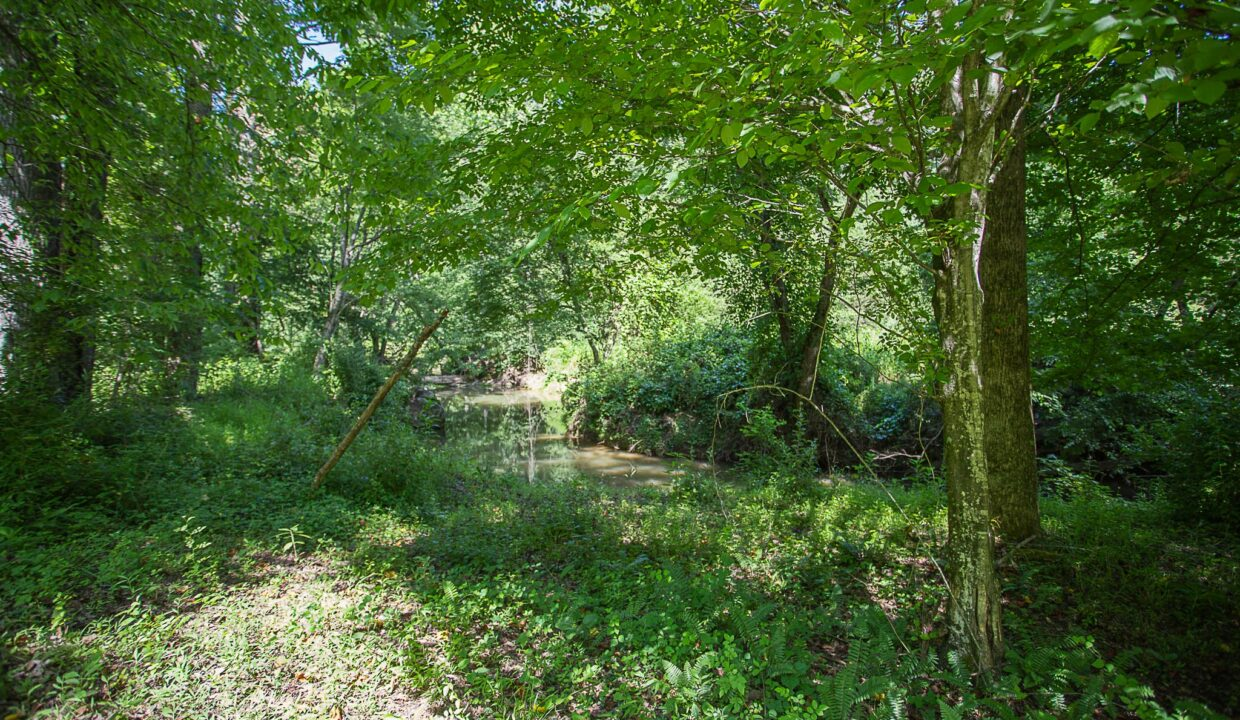 Land for Sale in Madison_19