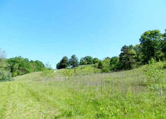 Large Tract of Land Near SML