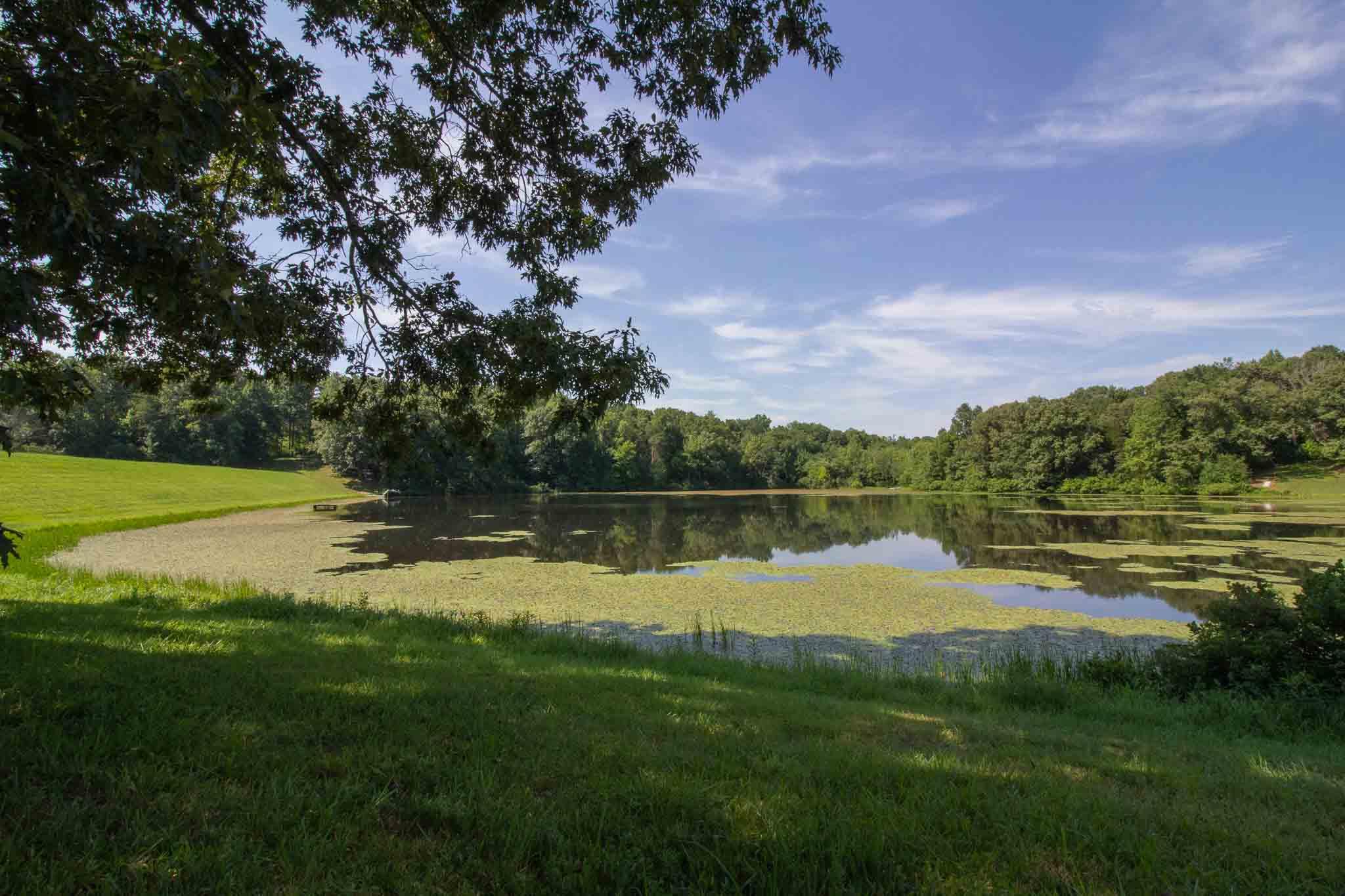 Lake Property for Sale, Stockton Lake, Lot 17