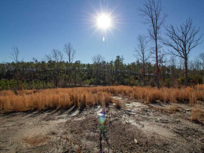 land for sale in nelson county