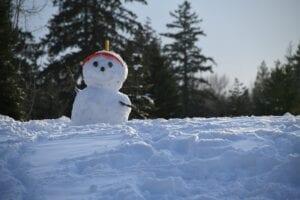 Tentative Winter Show