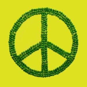 International Day of Peace Spirit Day