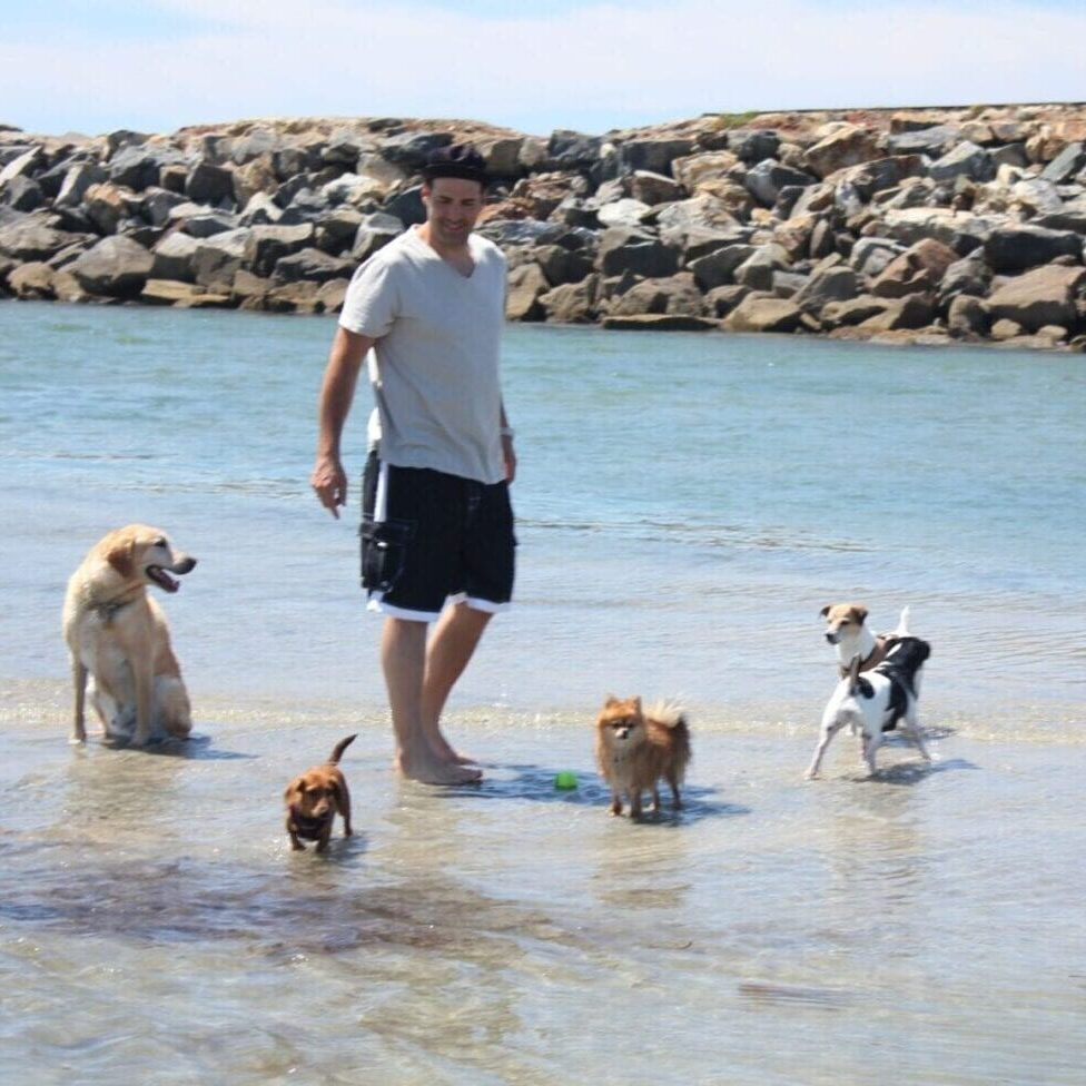 CC with dogs on beach