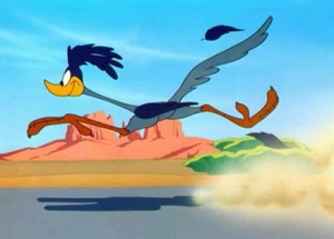 roadrunner from the looney toons cartoon