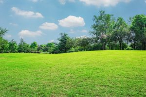 Guide to Land Investment in TX