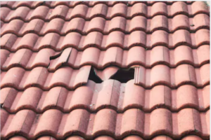 Sell a House with a Damaged Roof