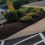 ECIS-landscaping2