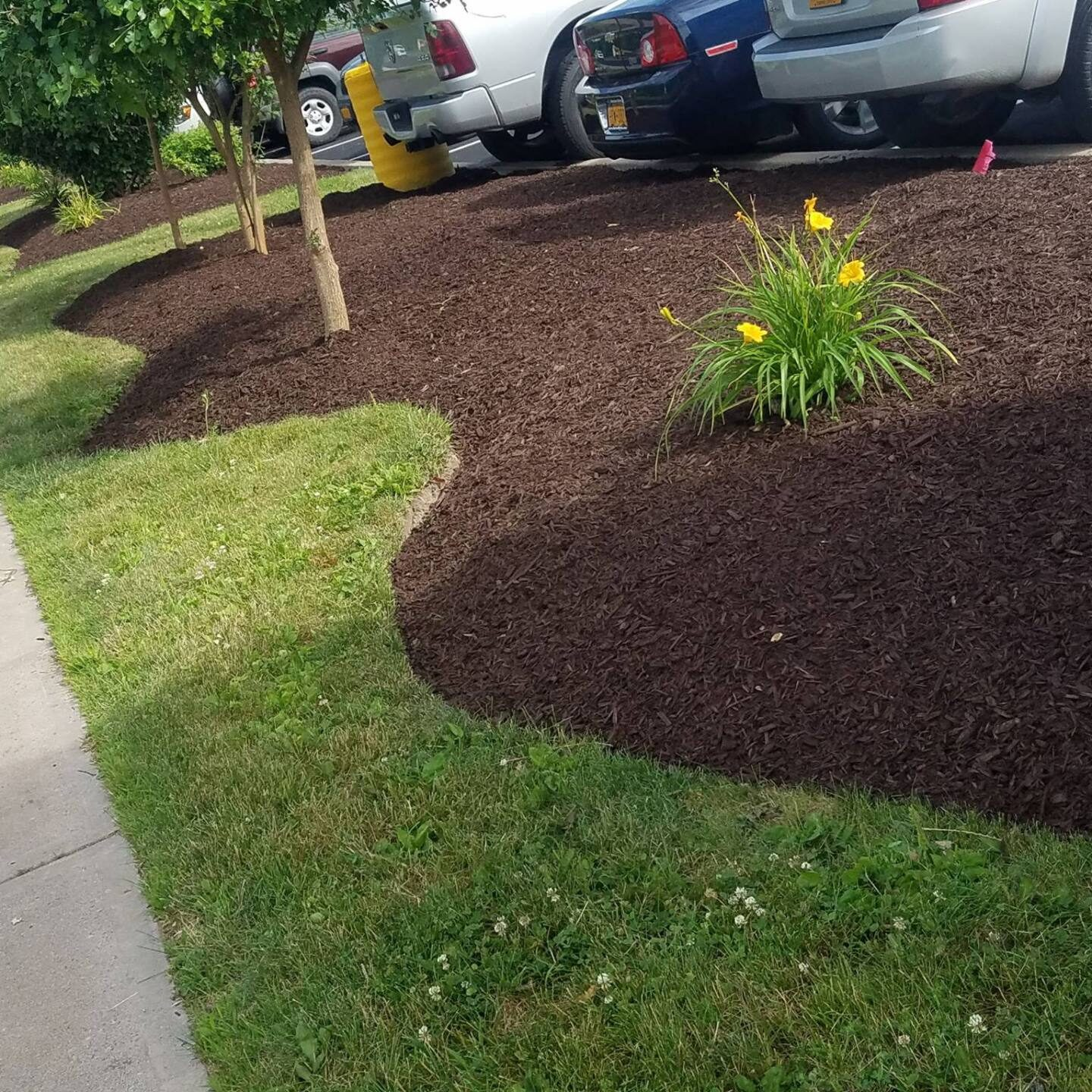 ECIS-landscaping (1)