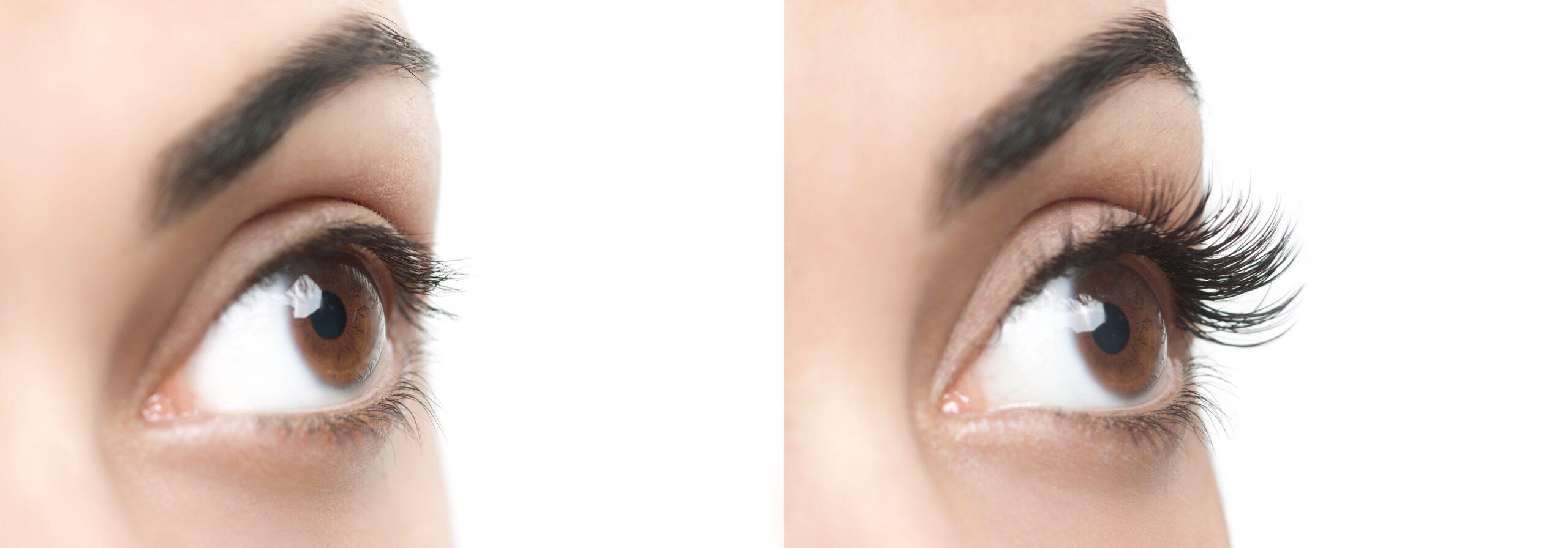 eyelash bar
