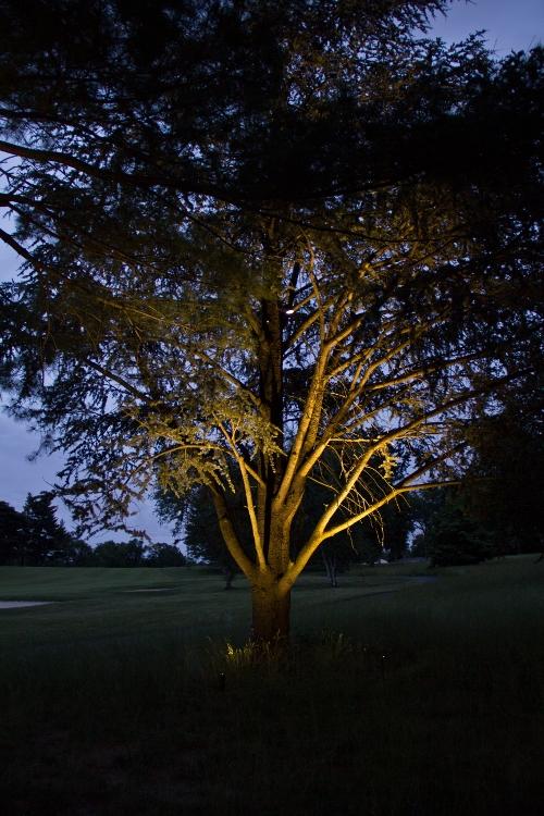 Landscape Lighting | Young's Landscape Management, Inc.