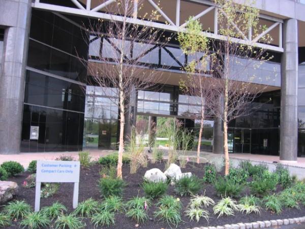Commercial Landscape Management | Youngs Landscape Management Inc