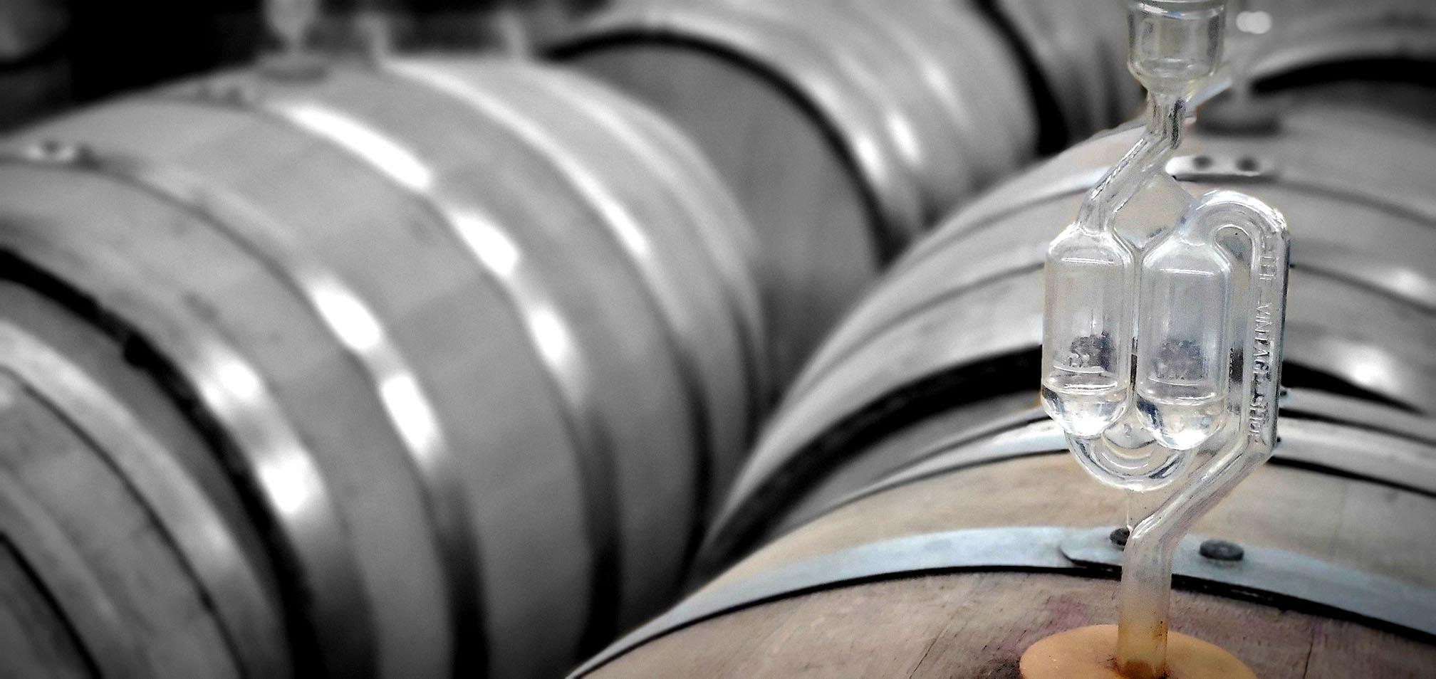 Westchester Barrels Wine Fermentation