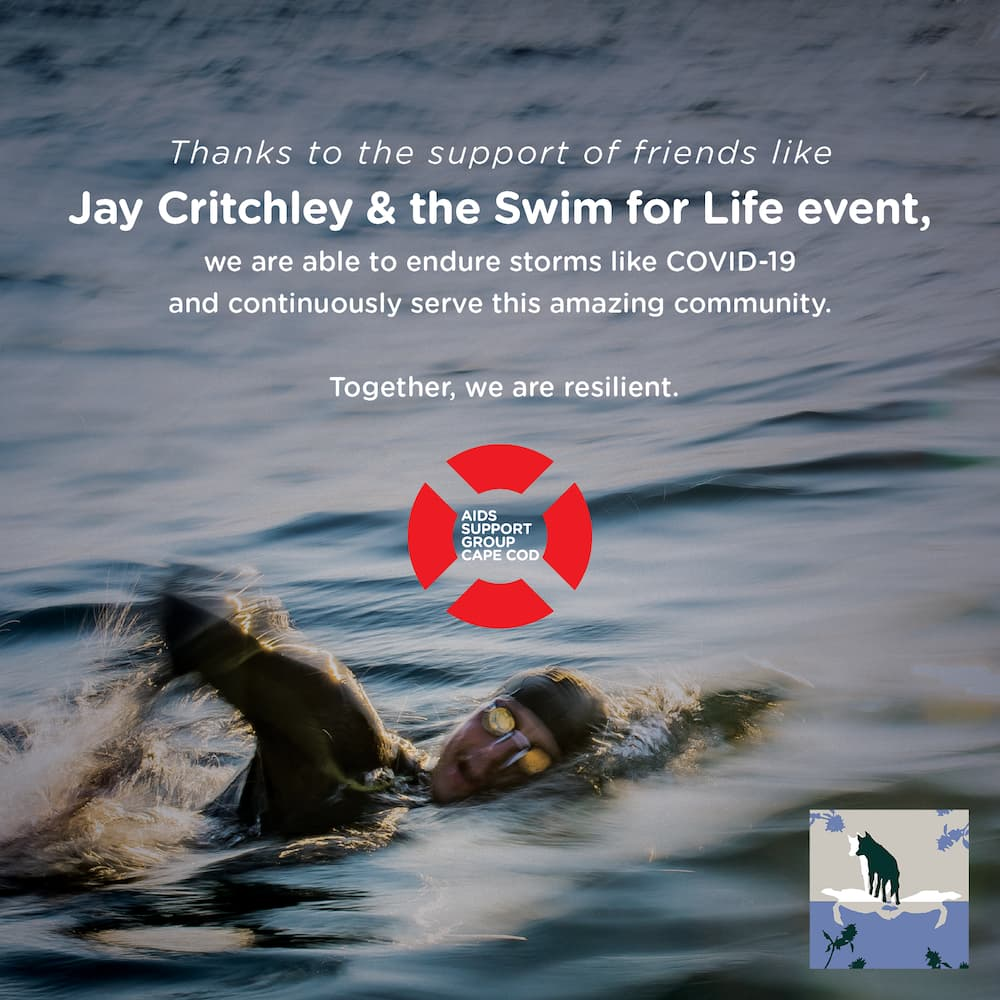 Swim for Life Provincetown
