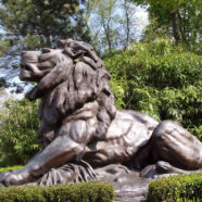 National Zoo's Giant Lion