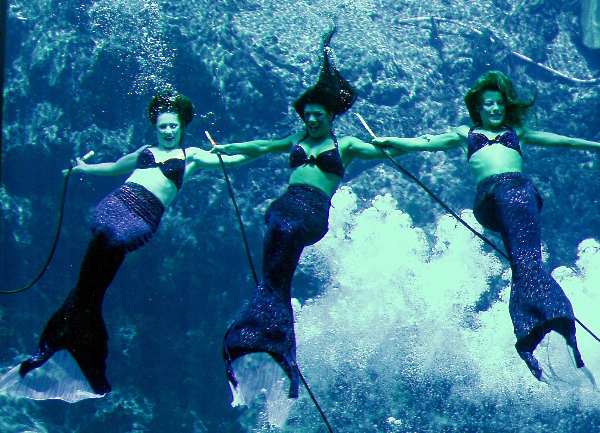 Mermaids! Weeki Wachee Springs