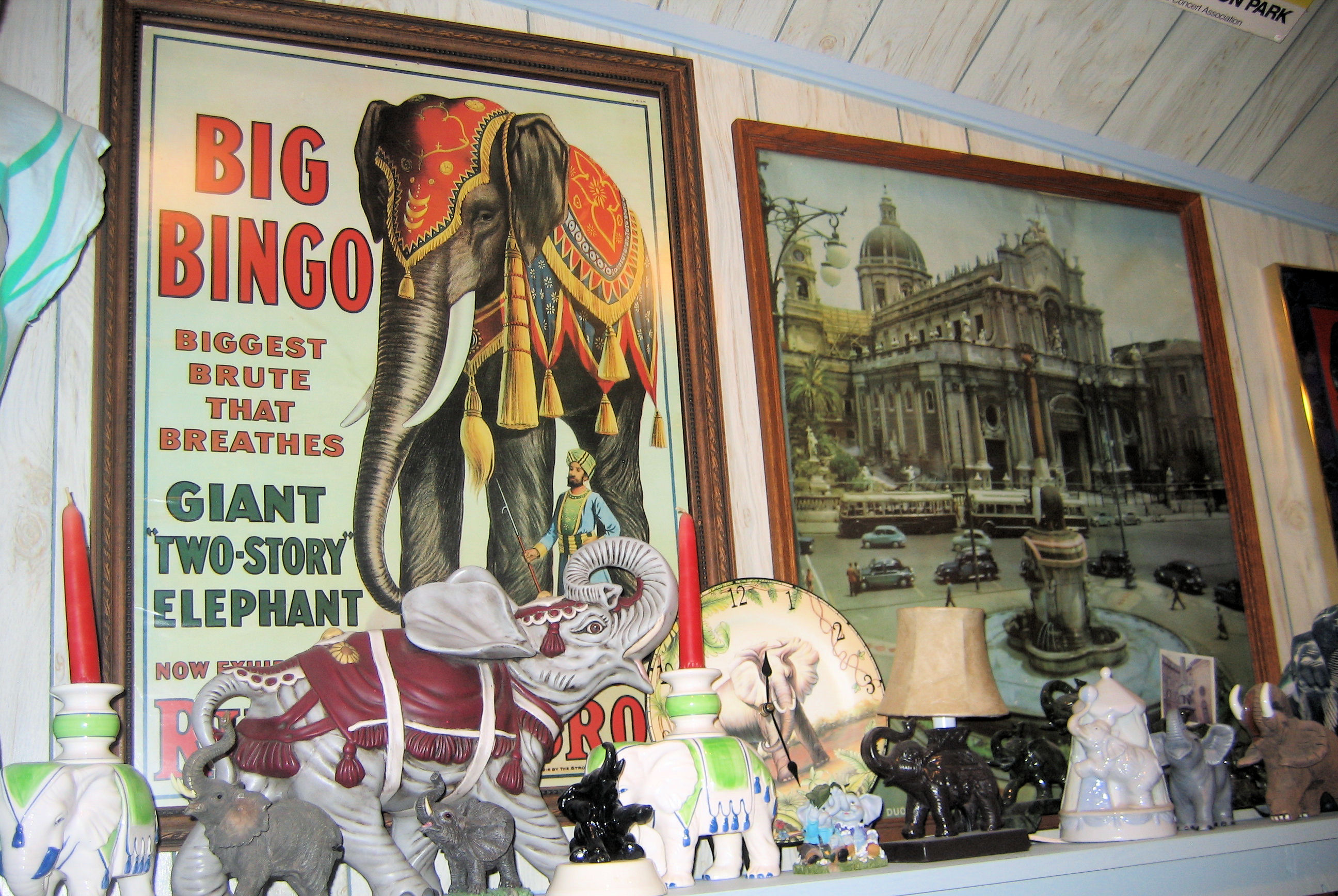 Mr. Ed's Elephant Museum