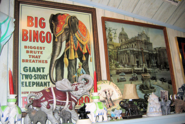 Mr. Ed's Elephant Museum Part Deux