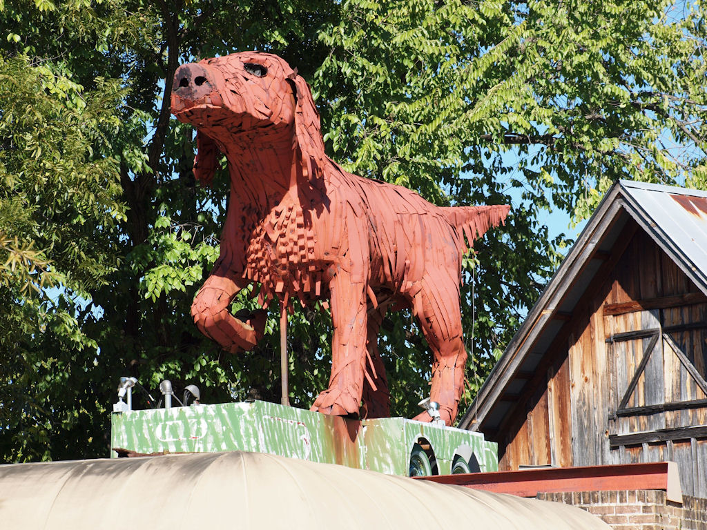 Rusty The Huge Red Dog