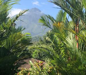 SO Productive in Costa Rica
