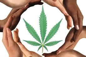 Ring of hands around marijuana leaf