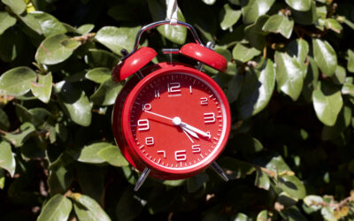 The Best Alarm Clock in 2020: All alarms are not equal