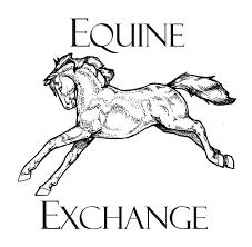 uvex equestrian usa retailer equine exchange