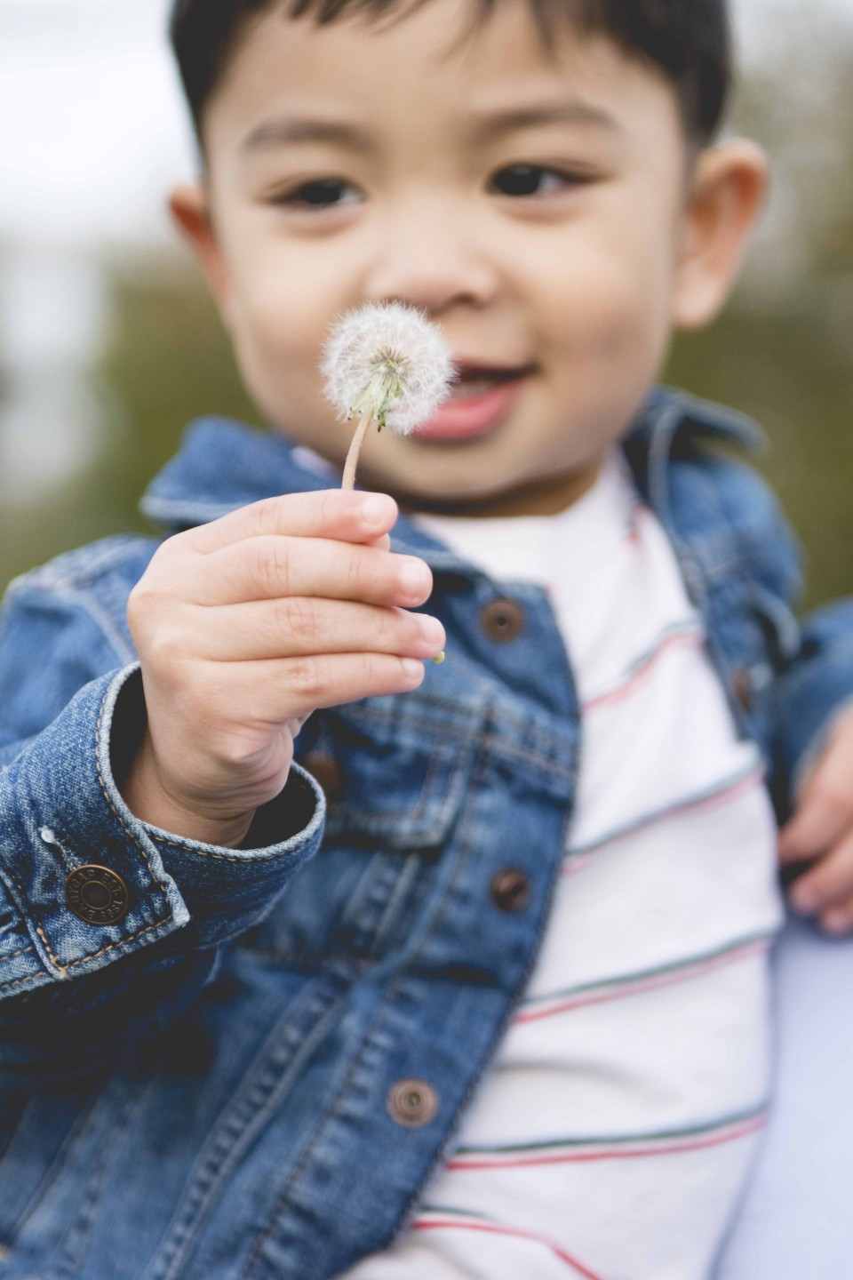 2 year old with dandelion
