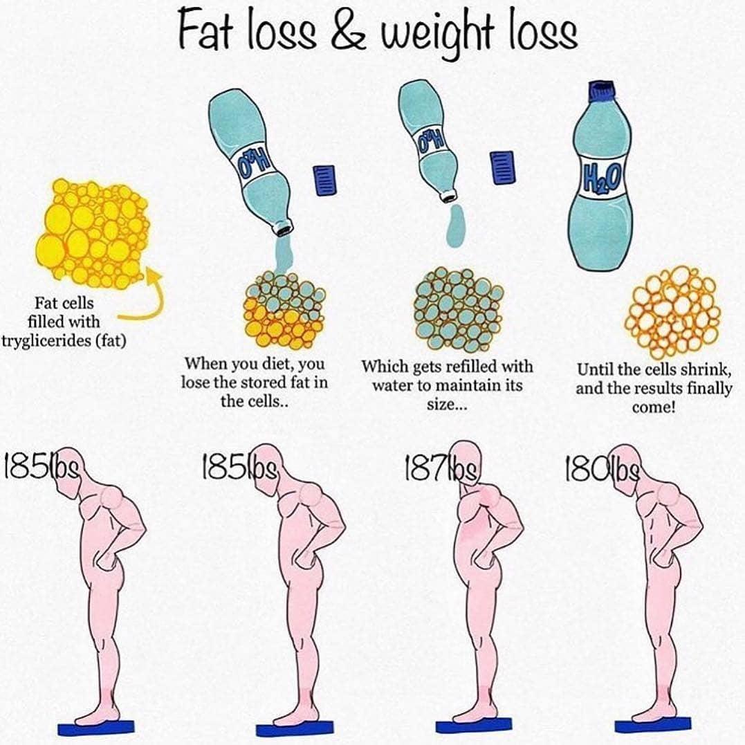 FAT LOSS & WEIGHT LOSS