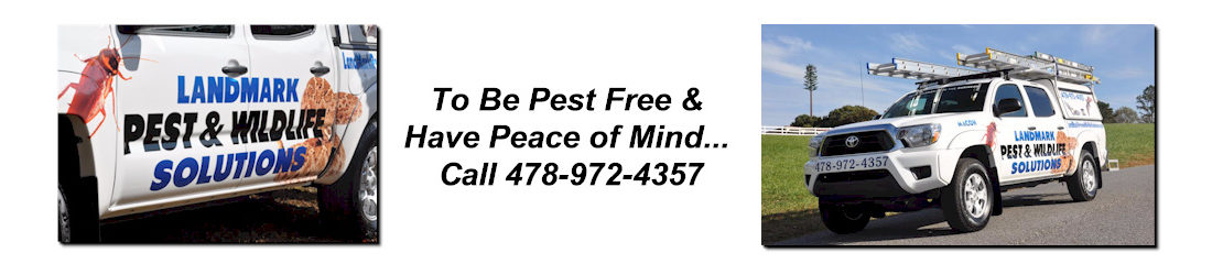 LandMark Pest and Wildlife Solutions