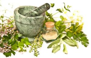 herbs 2
