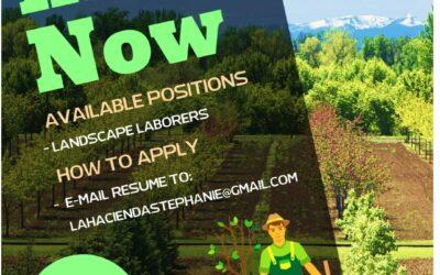 Opportunities with Hacienda