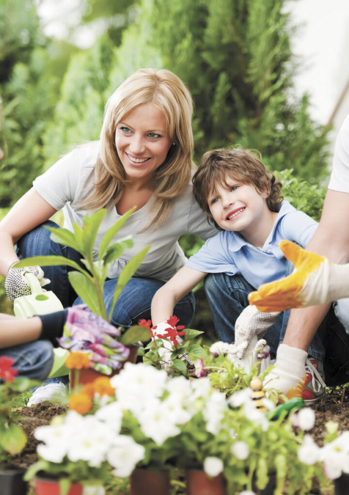 Hobbies To Try As A Family