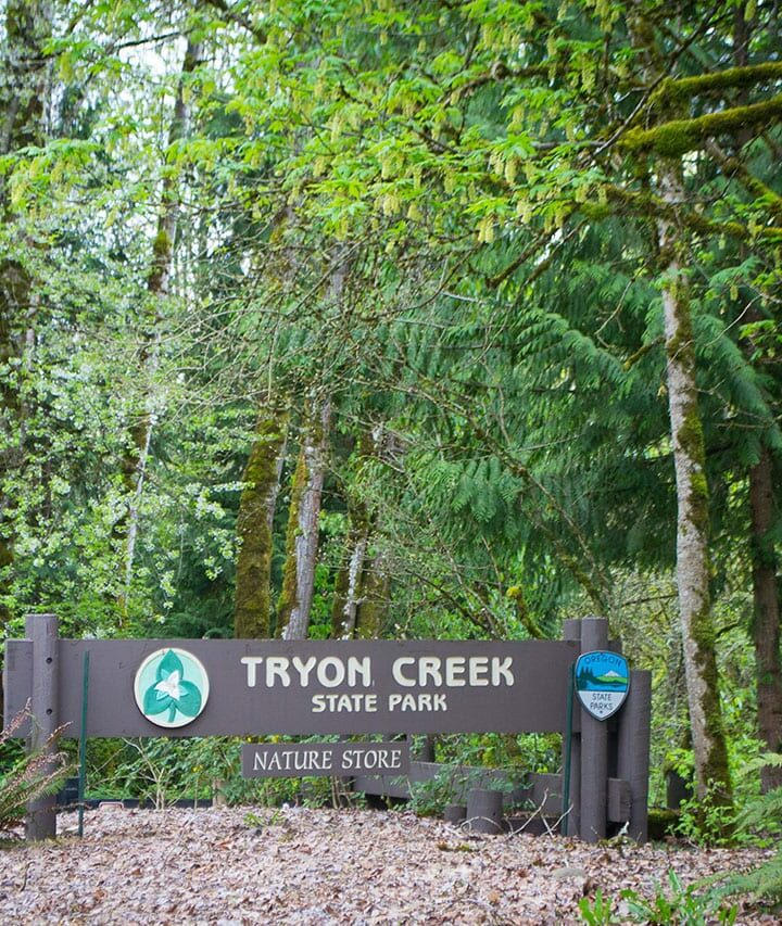 Oregon State Parks To Check Out With Your Family