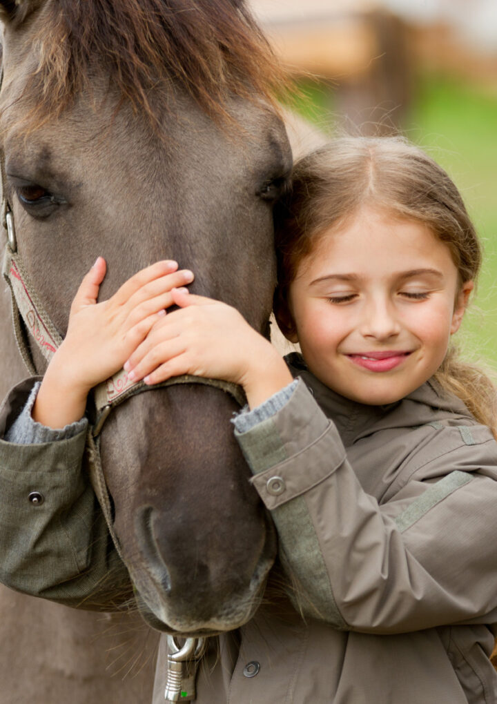 Why Your Child Should Learn About Horses