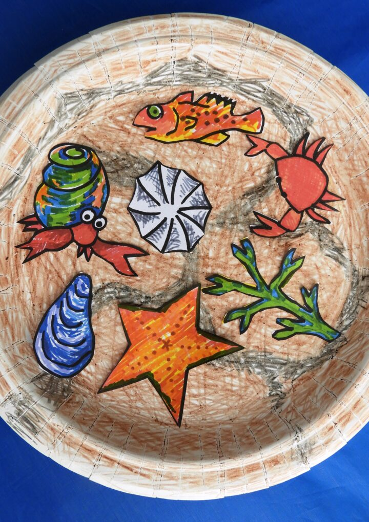 Art For Everyone! – What Is In A Tide Pool?