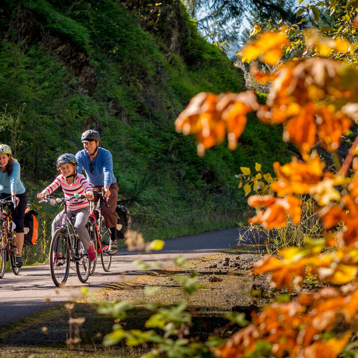 The Best Fall Activities For Families In Oregon