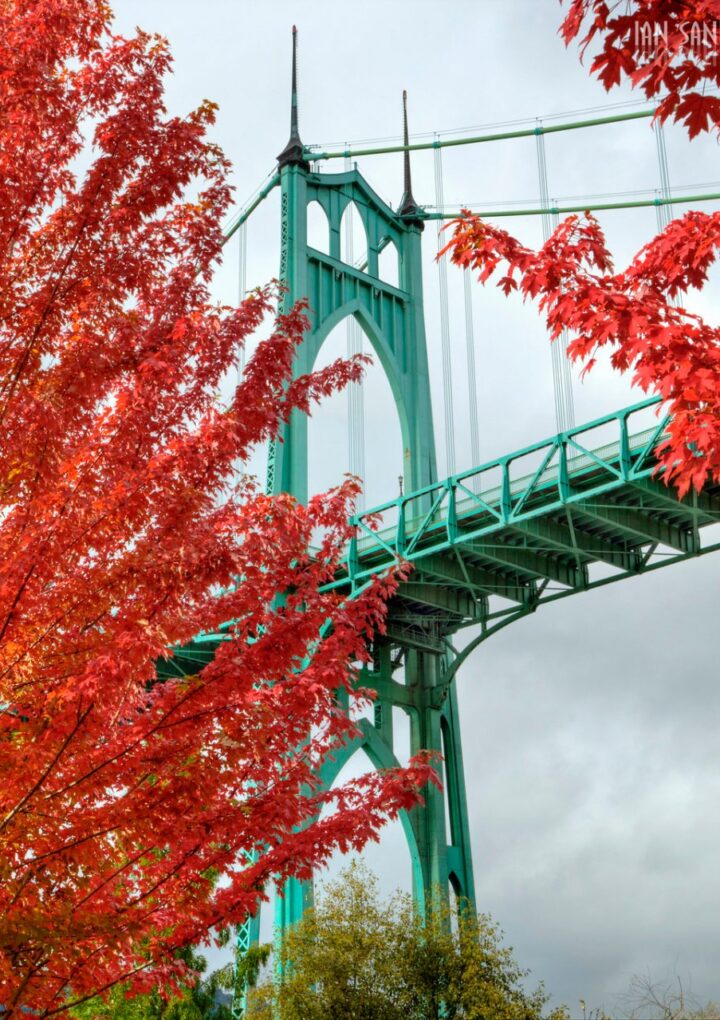 Timeless Fall Traditions With Some Local Twists